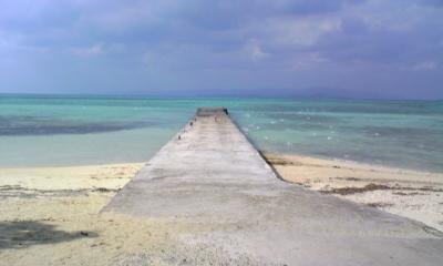 竹富の集落。ここぞ沖縄!