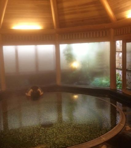 源泉と明治15年創業の歴史あるゆ宿 藤田屋 お庭が見える内風呂は趣があります