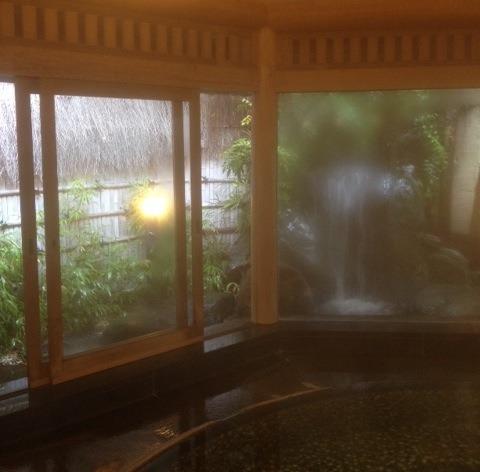 源泉と明治15年創業の歴史あるゆ宿 藤田屋 内風呂からの眺め