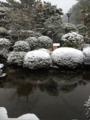 五浦観光ホテル 雪の中庭