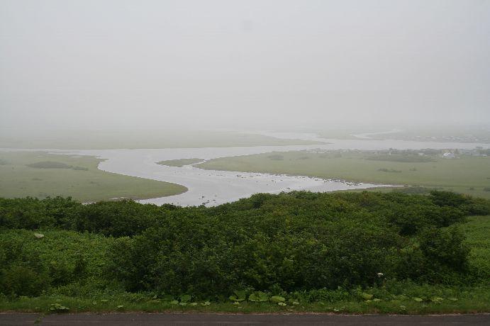 雨霧の霧多布湿原