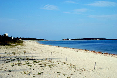 島一番の観光ビーチ!