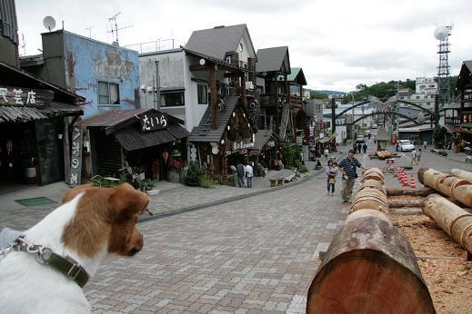 アイヌ文化