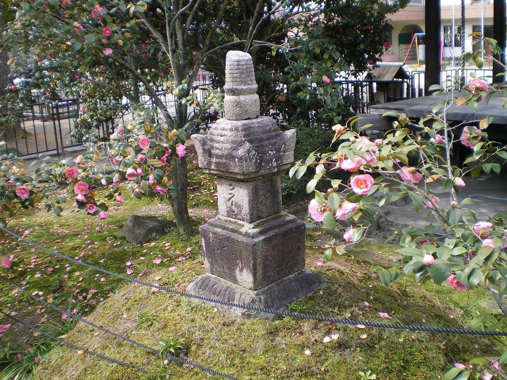 伝香寺の散椿(武士椿)