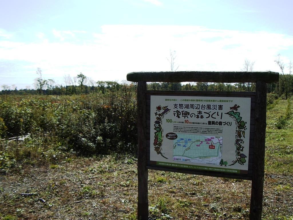 支笏湖の森・復興ボランティア