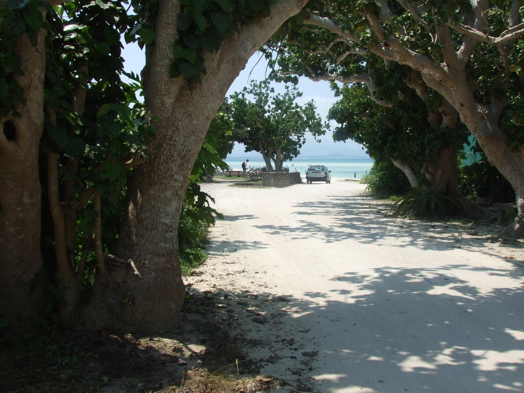コンドイビーチ(竹富島)
