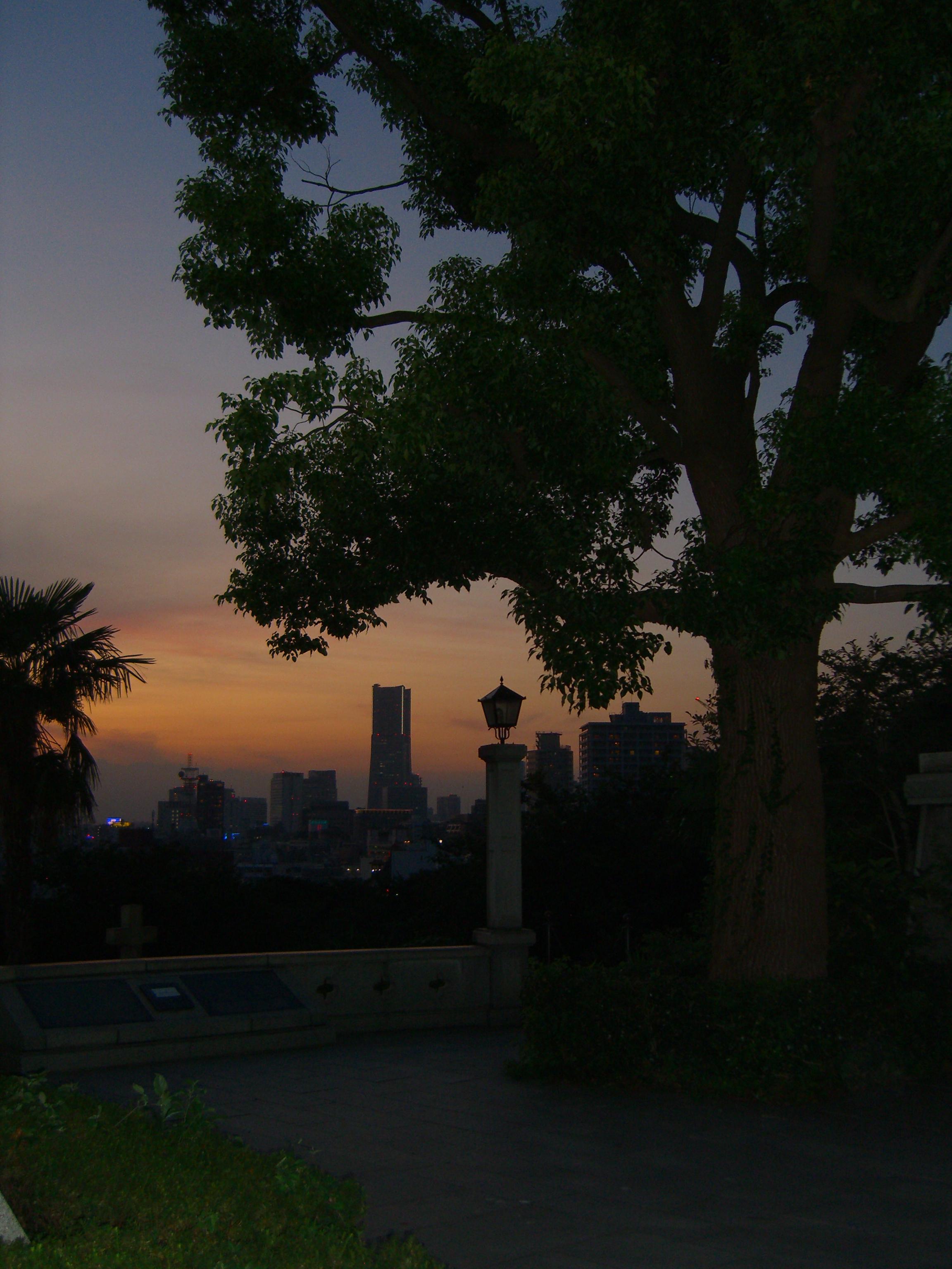 夜景が素敵でした。