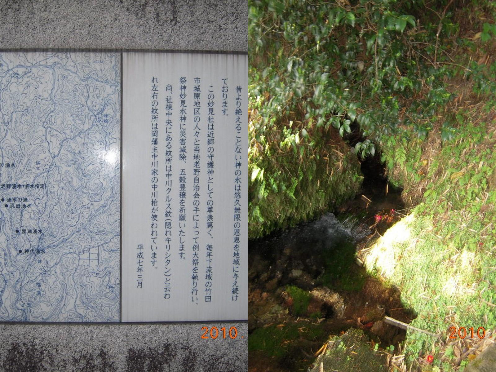 桜、新緑の頃 オススメの場所の1つが老野湧水付近です。