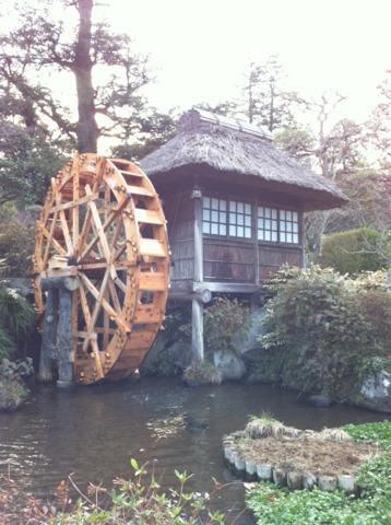 富士屋ホテル 広い日本庭園もあって、食前の散歩にちょうどいい。